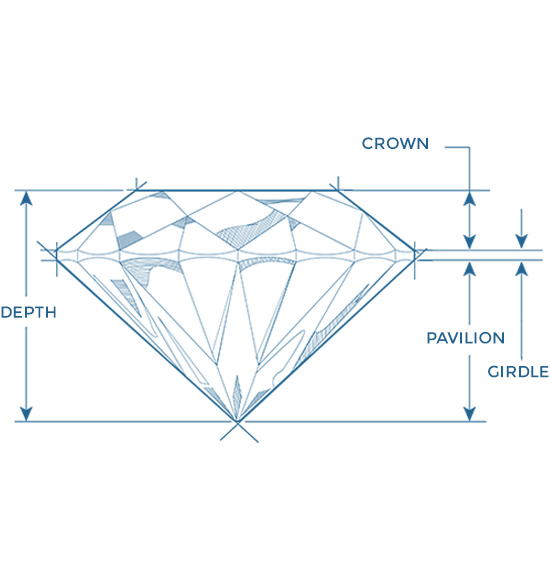 2d diamond anatomy diagram