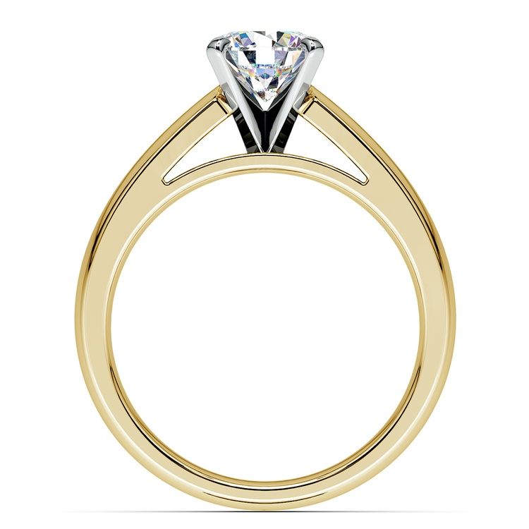 Cathedral Solitaire Engagement Ring in Yellow Gold (4mm) | 02
