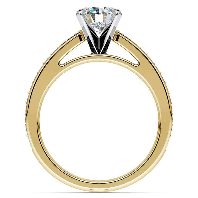 Pave Cathedral Diamond Engagement Ring in Yellow Gold (1/4 ctw) | 02