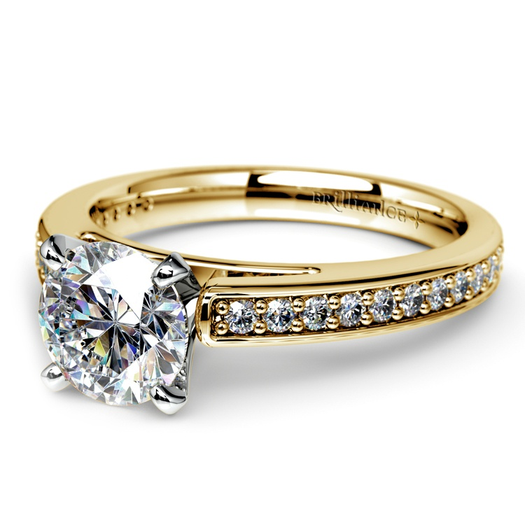 Pave Cathedral Diamond Engagement Ring in Yellow Gold (1/4 ctw) | 04