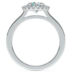 Pave Halo Diamond Engagement Ring in White Gold | Thumbnail 02
