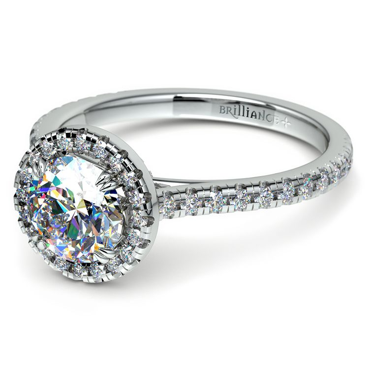 Petite Halo Diamond Engagement Ring in White Gold | 04