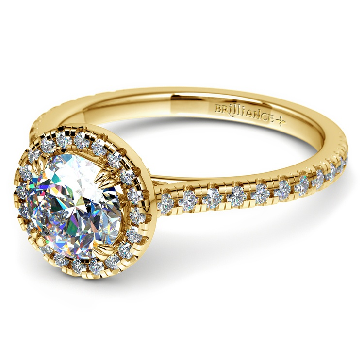 Petite Halo Diamond Engagement Ring in Yellow Gold | 04