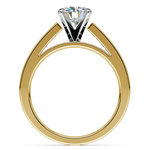 Princess Channel Diamond Engagement Ring in Yellow Gold (1 ctw) | Thumbnail 02