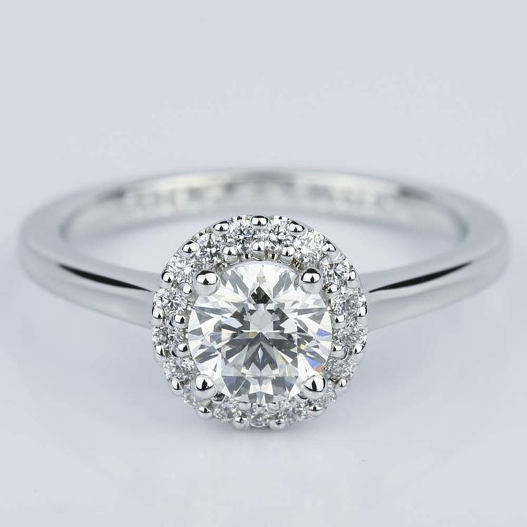 Pave Halo Diamond Engagement Ring in White Gold (0.80 ct.)