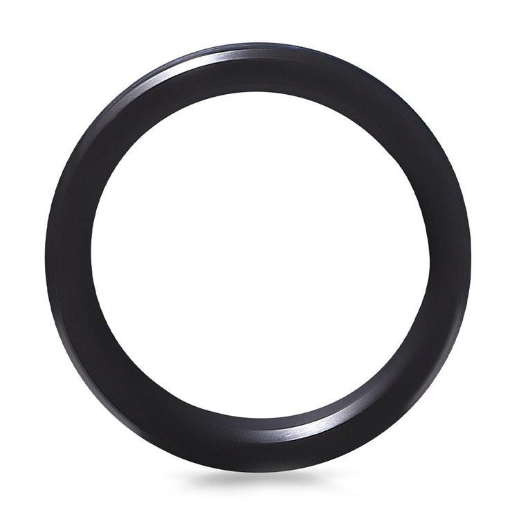 Actaeon - Elysium Inlay Matte Zirconium Mens Ring   03